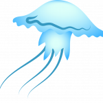 jellyfish, sea, blue