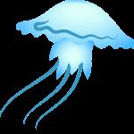 jellyfish, sea, blue